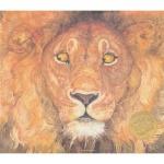 本书单中包括的绘本:狮子和老鼠(2010年凯迪克金奖)