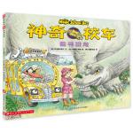 本书单中包括的绘本:追寻恐龙-神奇校车图画书版